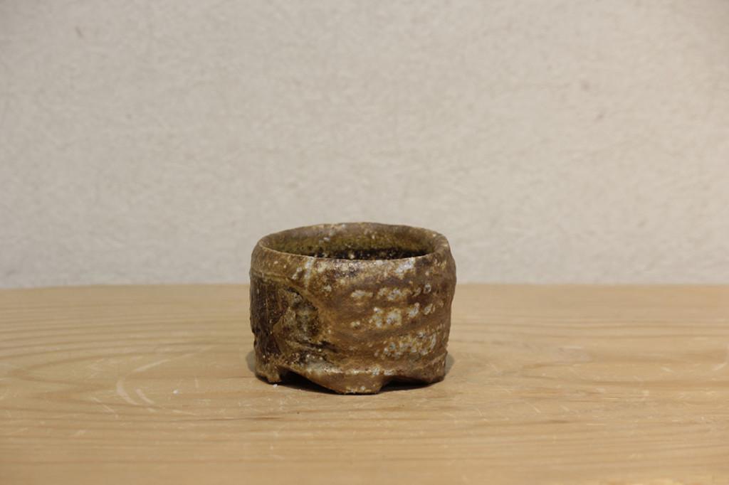 sakecup3